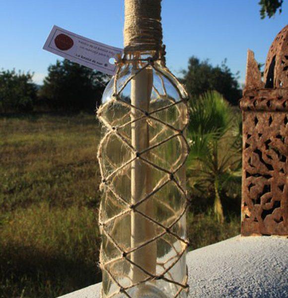 La Botella de Nur, Mensajes en una Botella