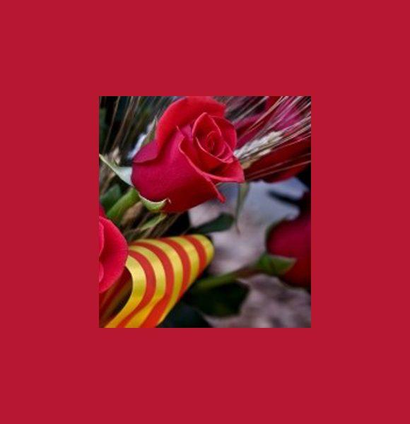 Regala una Rosa por Sant Jordi