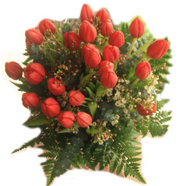 Regala tulipanes con La Botella de Nur